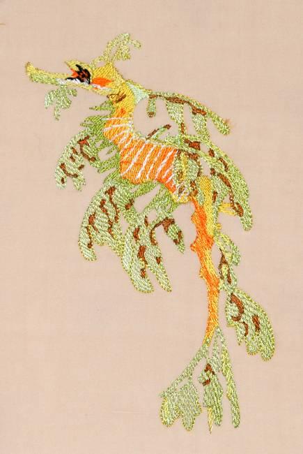 Bfc seahorse fantasy