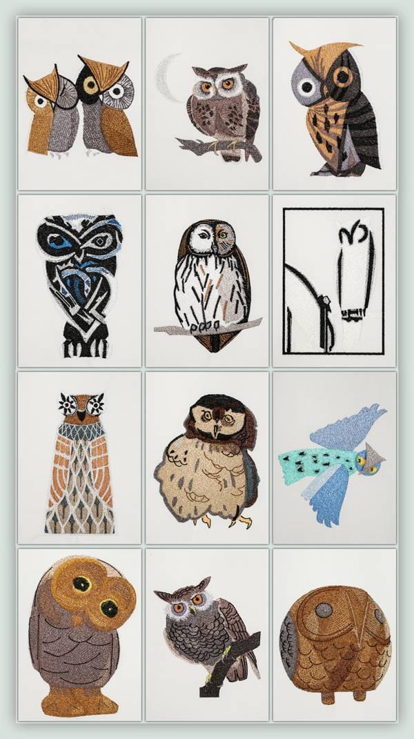 Bfc outlandish owls