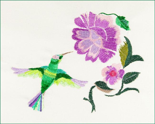 BFC1671 The Hummingbird in the Garden
