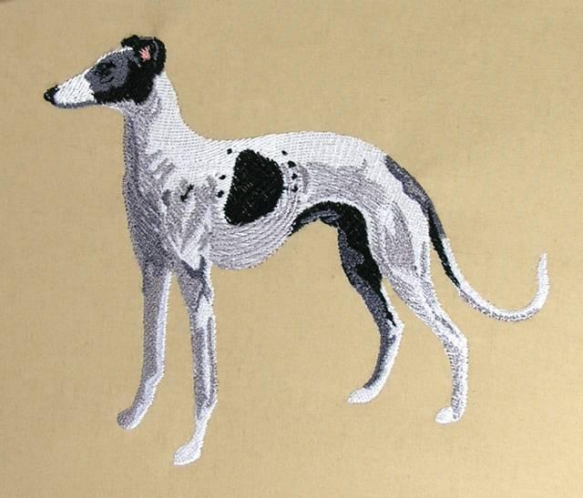 BFC0526 Greyhounds