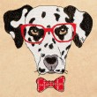 Hipster Canine 1