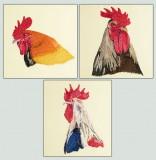 BFC1430 Three Rooster Portraits