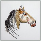 BFC1467 Three Fantasy Horse Portraits