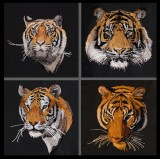 BFC1472 Four Tiger Portraits