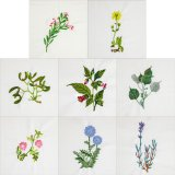 BFC1989 Wildflower Quilt Blocks