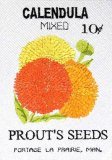 BFC0483 Seed Packets - Flowers 09