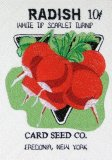 BFC0487 Seed Packets - Veggies 07