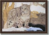 BFC0564 Window-Snow Leopard