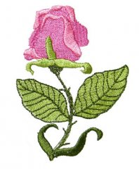 Art Nouveau Medium Rose