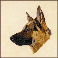 BFC30389 German Sheperd