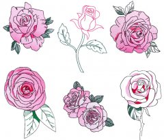 BFC1724 Decorative Roses