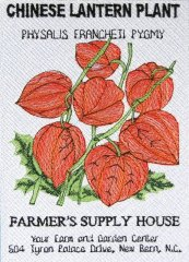 BFC0483 Seed Packets - Flowers 07