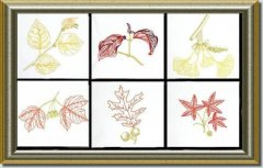 BFC0630 Color Sketches-Autumn Leaves