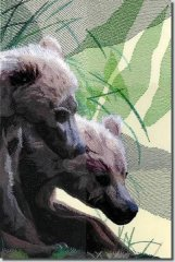 BFC0685 Window-Bear Cubs