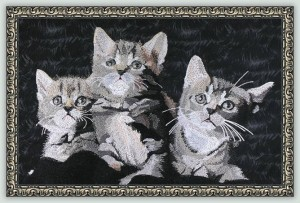 BFC1100 Large Kittens