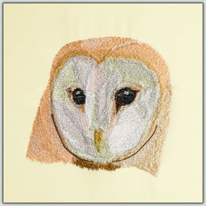 BFC1431 Three Owl Portraits