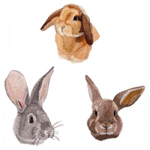 BFC1644 Three Bunny Portraits