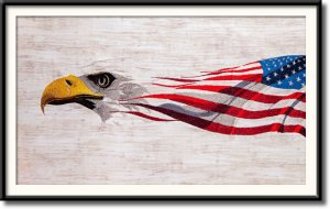 BFC1833 Large Eagle Portrait with American Flag