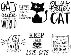 BFC1851 Cat Quote Fun Set