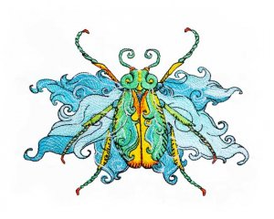 1856 Fairy Beetle