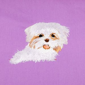 Shih Tzu Pocket Topper