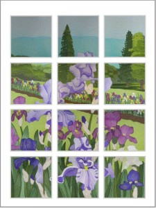 BFC0434 Windows - Iris Fields