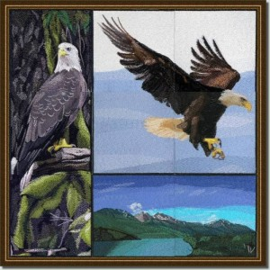 BFC0625  A Collage - Freedom