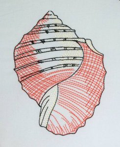 BFC0632 Color Sketches Shells 01
