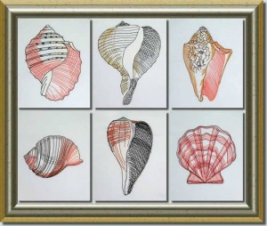 BFC0632 Color Sketches-Shells
