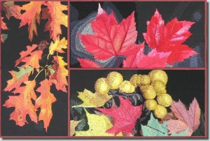 BFC0636 An Autumn Collage