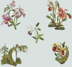 BFC0735 Orchid Jungle Designs