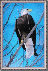 BFC0954 Window-An Eagle in Springtime