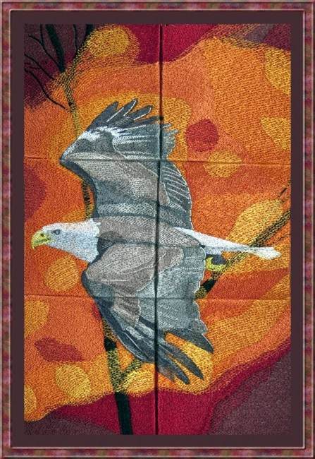 BFC1019 Window-An Eagle in Autumn