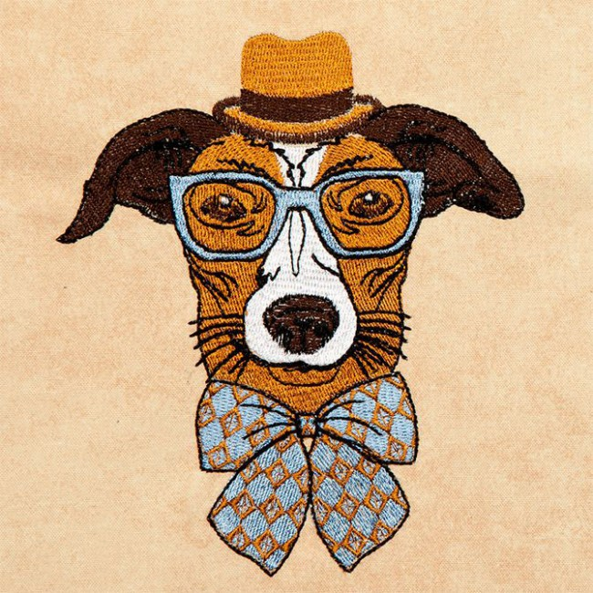 Hipster Canine 6