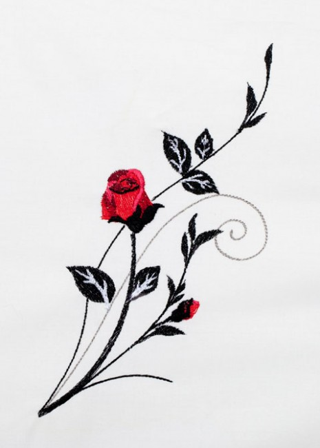 Red Roses - Black Scrolls 3
