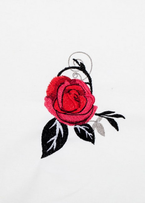 Red Roses - Black Scrolls 11