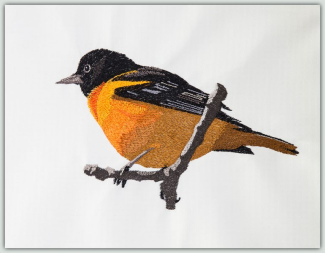 BFC1382 Three Baltimore Orioles