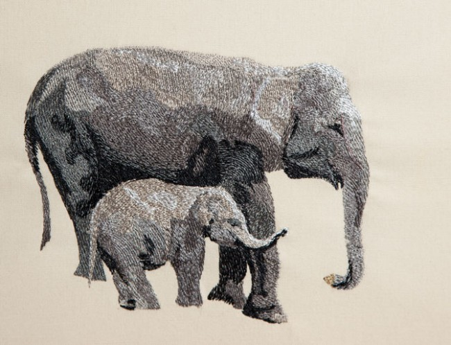 BFC1434 Endangered Species Series - Sumatran Elephant