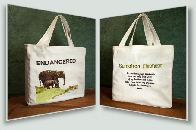 BFC1434 Endangered Species - Sumatran Elephant Thread Kit