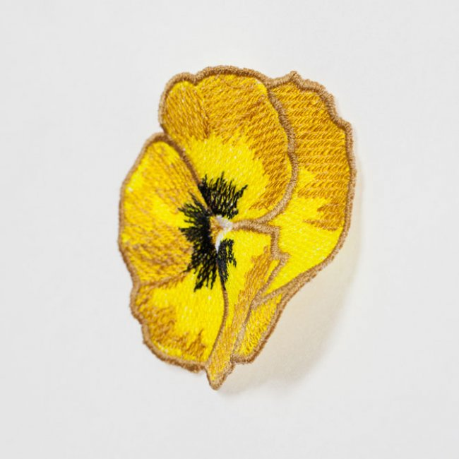 BFC1450 FSL Yellow Pansy