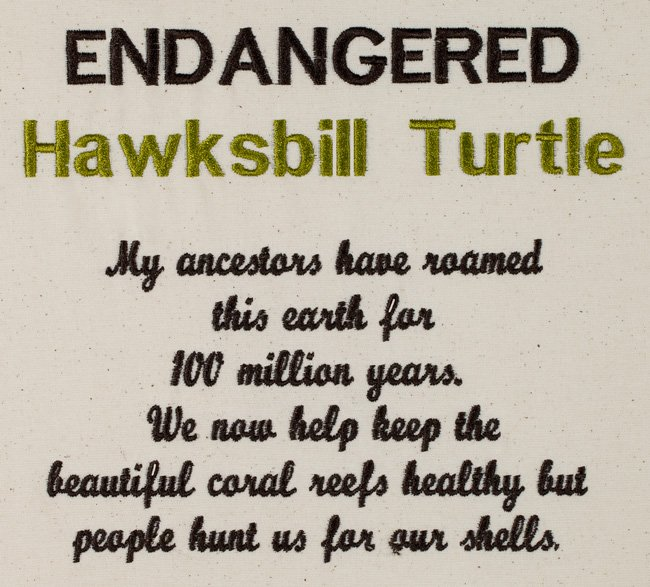 BFC1491 Endangered Species Series - Hawksbill Turtle