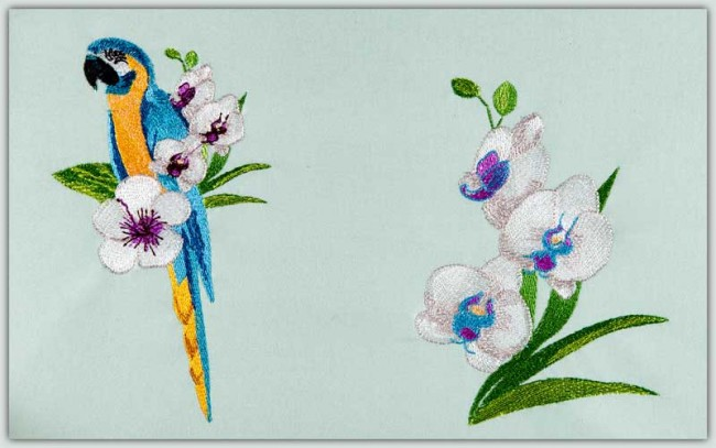 BFC1507 Tropical Birds and Flowers