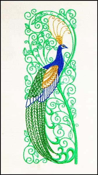 Stately Peacock