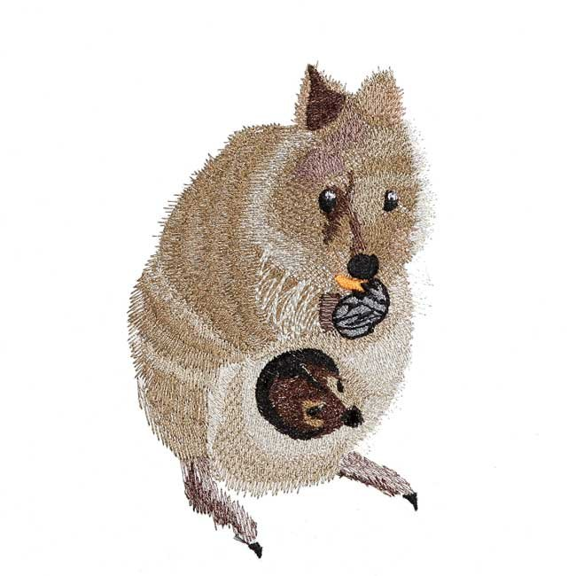 BFC31577 Quokka Mama and Baby