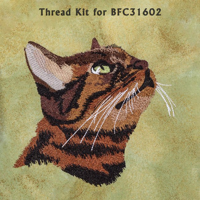 BFC31602 Bronko Billy Thread Kit