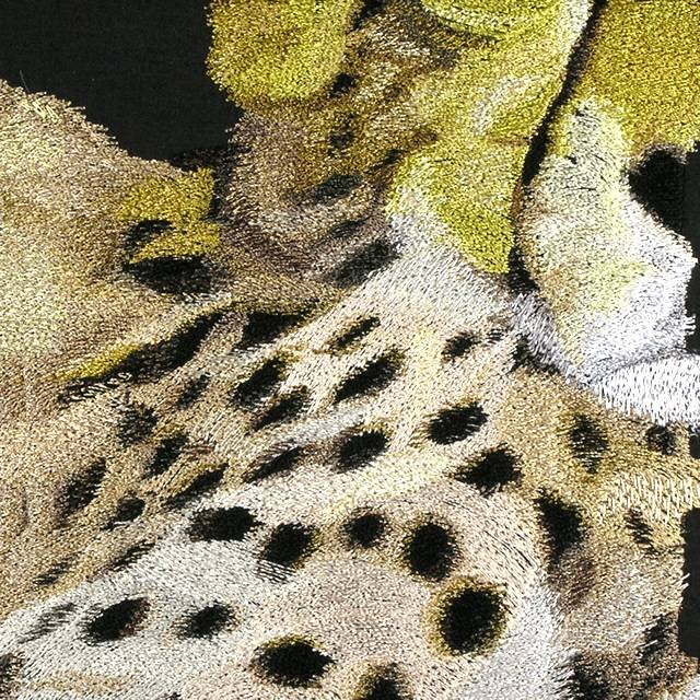 BFC0670 Window-Cheetah