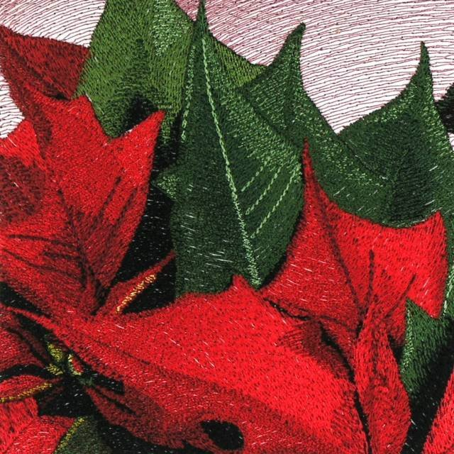 BFC0781 Window-A Poinsettia