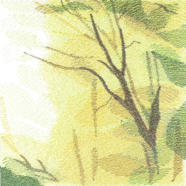 BFC0784 Window - Forest Dawn