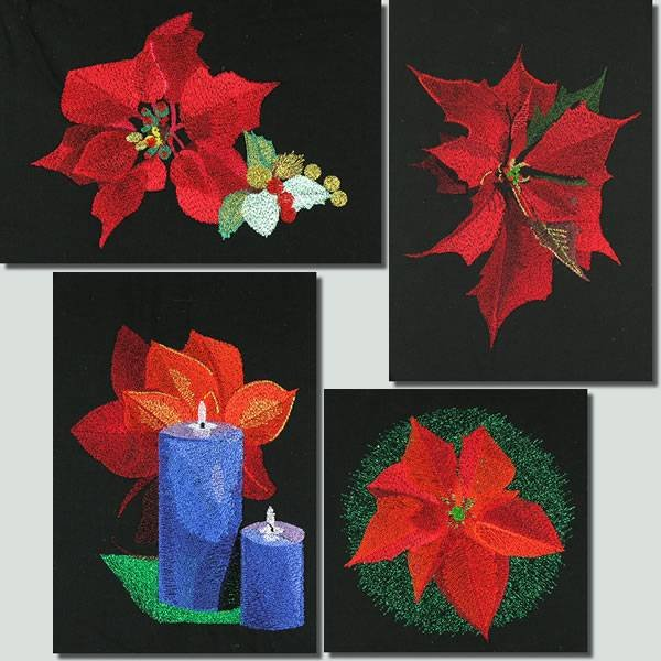 BFC0918 Four Poinsettias