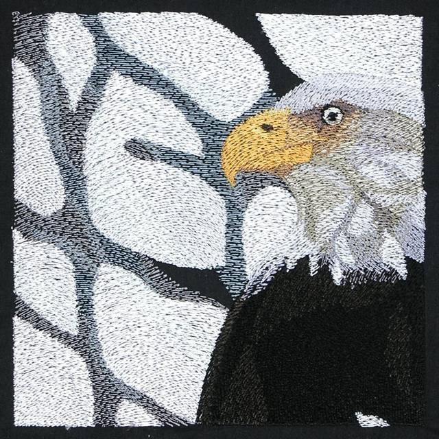 BFC0930 Window-An Eagle in Wintertime